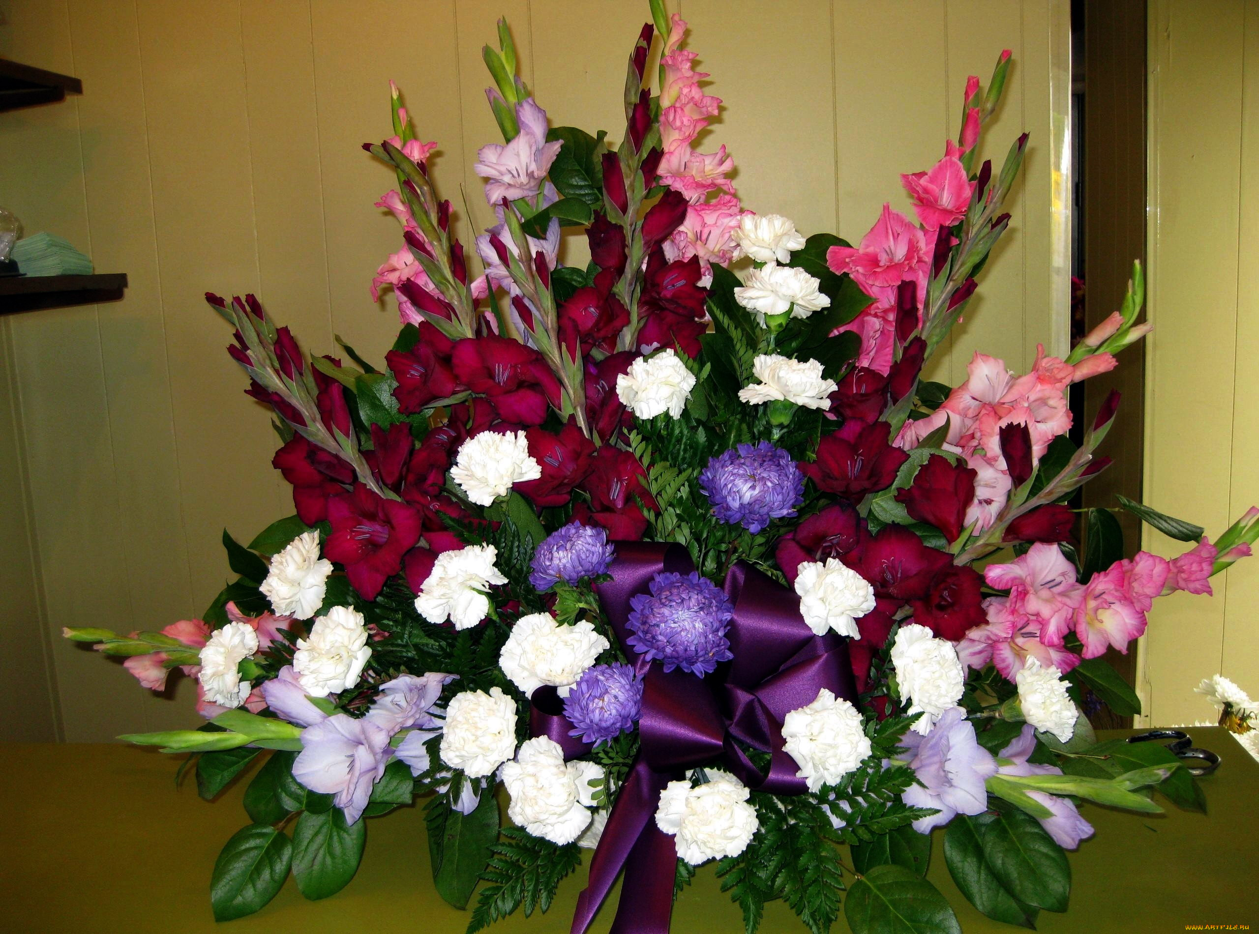 процедуре картинки гладиолусы цветы букеты все переживания держал